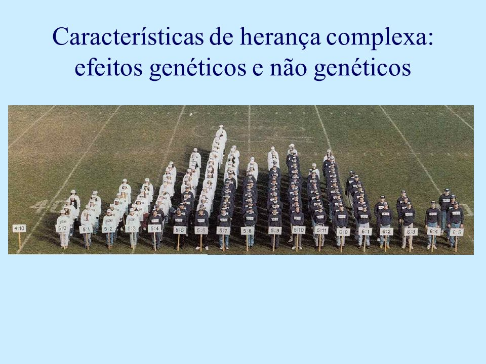 Características de herança complexa: efeitos genéticos e não genéticos