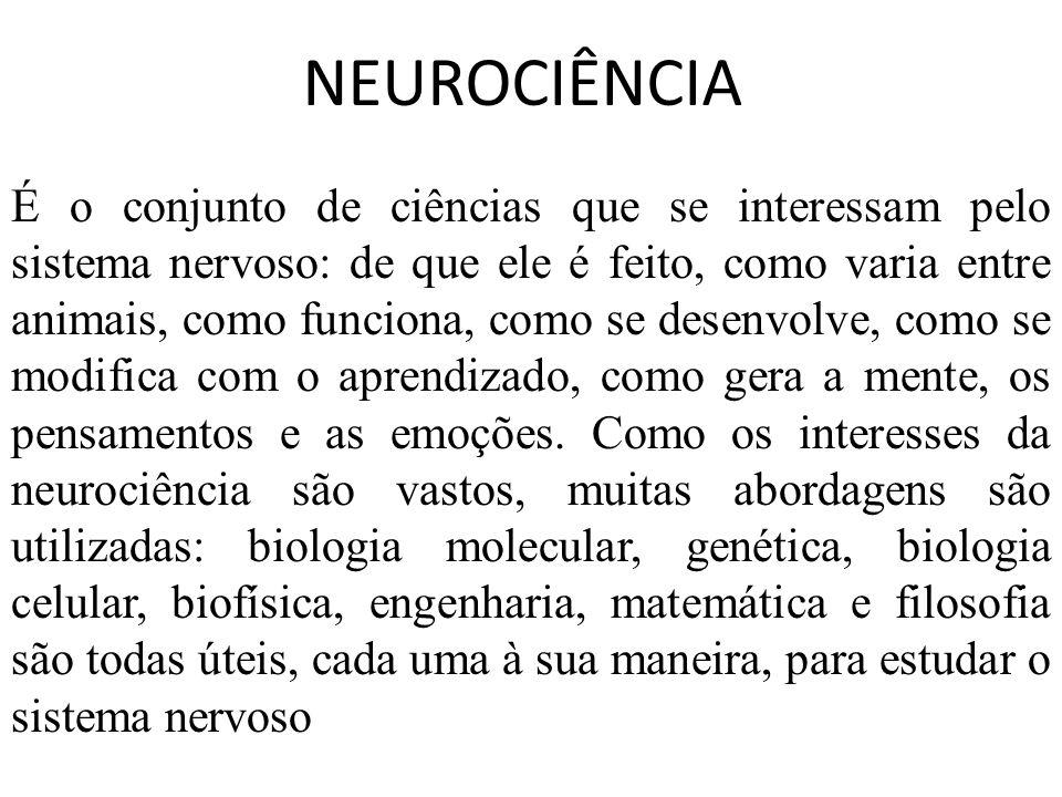 É o conjunto de ciências que se interessam pelo sistema nervoso: de que ele é feito, como varia entre animais, como funciona, como se desenvolve, como se modifica com o aprendizado, como gera a mente, os pensamentos e as emoções. Como os interesses da neurociência são vastos, muitas abordagens são utilizadas: biologia molecular, genética, biologia celular, biofísica, engenharia, matemática e filosofia são todas úteis, cada uma à sua maneira, para estudar o sistema nervoso
