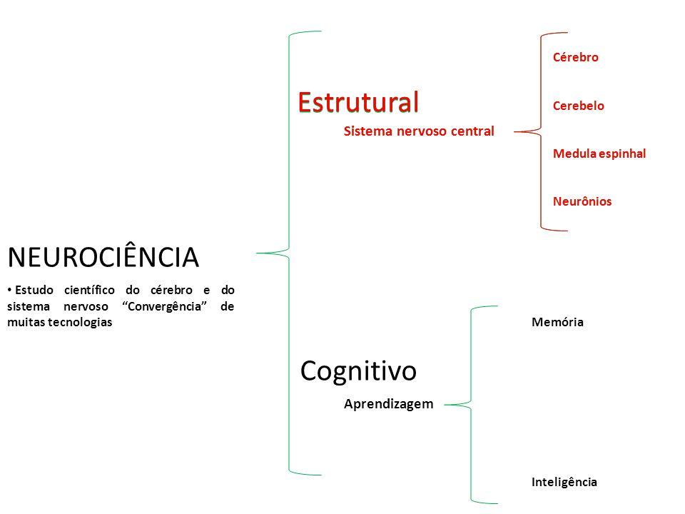 Estrutural Estrutural Estrutural NEUROCIÊNCIA Cognitivo