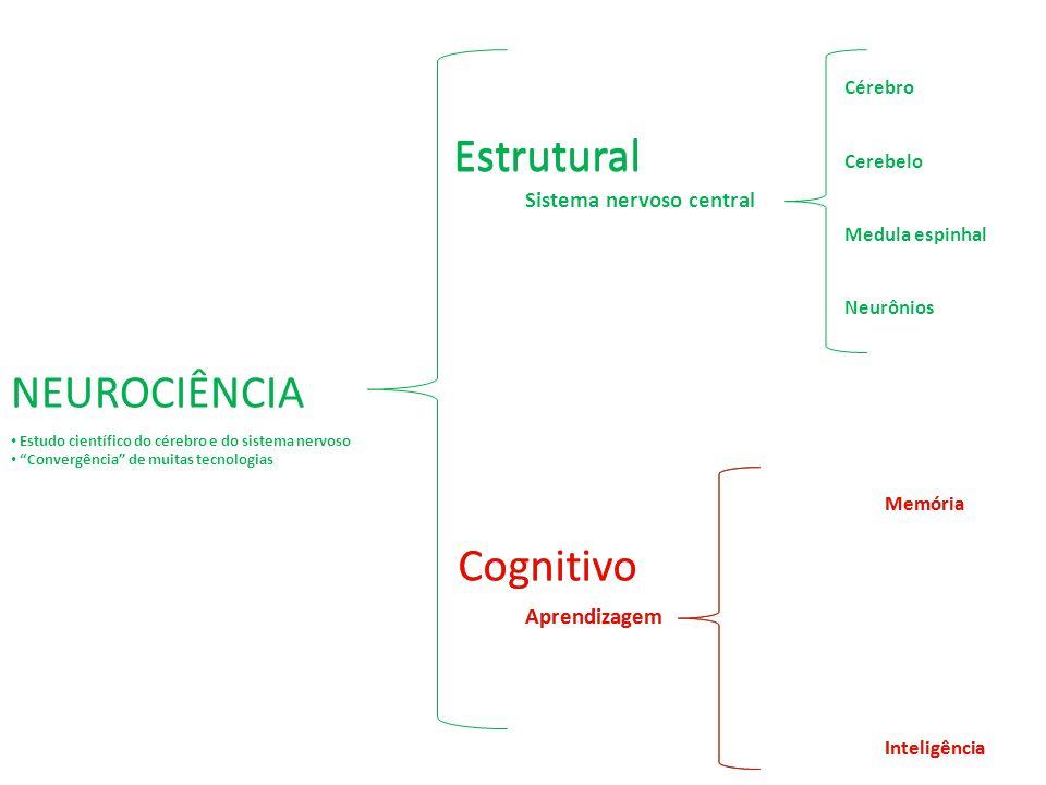 Estrutural Estrutural NEUROCIÊNCIA Cognitivo Cognitivo