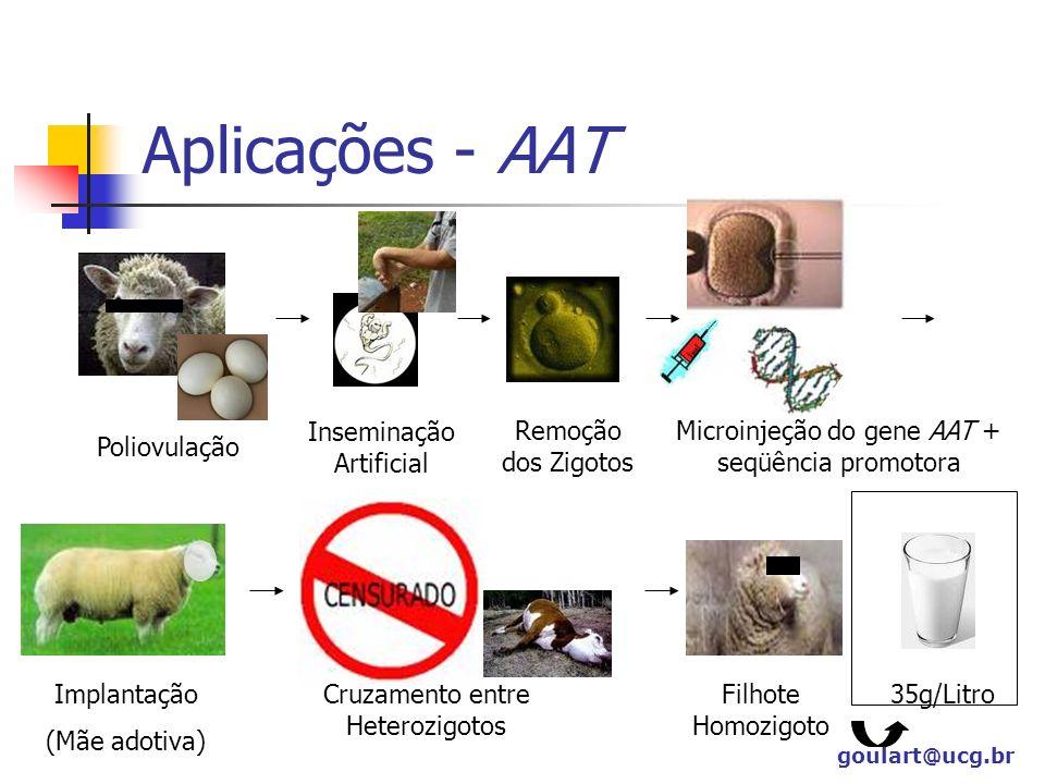 Aplicações - AAT Inseminação Artificial Remoção dos Zigotos