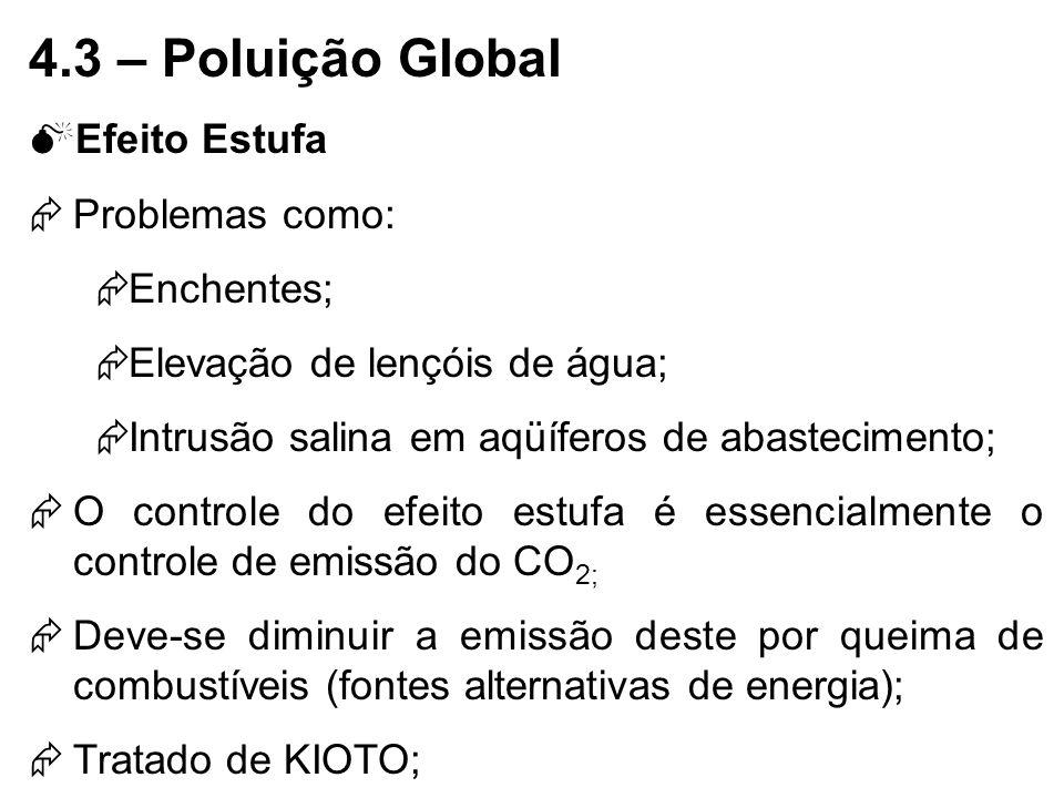 4.3 – Poluição Global Efeito Estufa Problemas como: Enchentes;