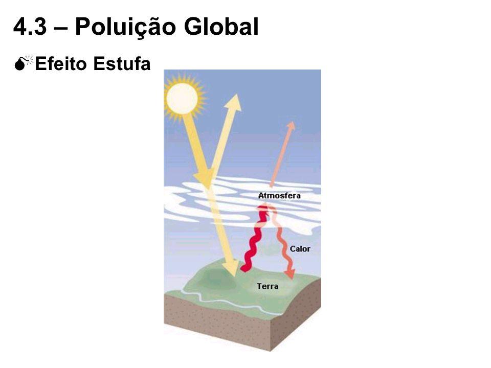 4.3 – Poluição Global Efeito Estufa