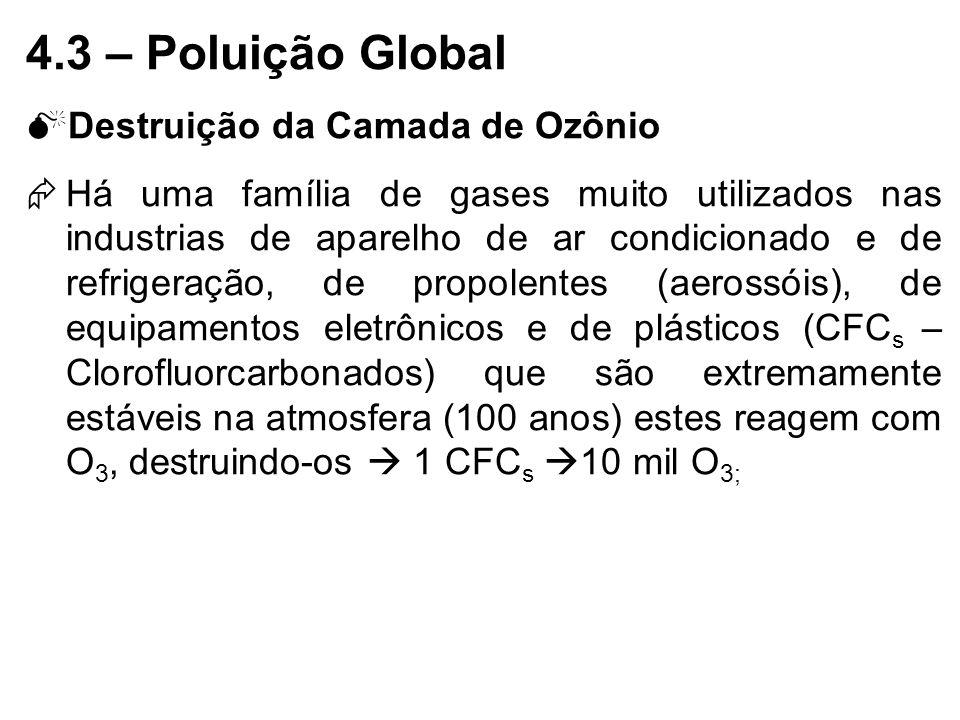 4.3 – Poluição Global Destruição da Camada de Ozônio