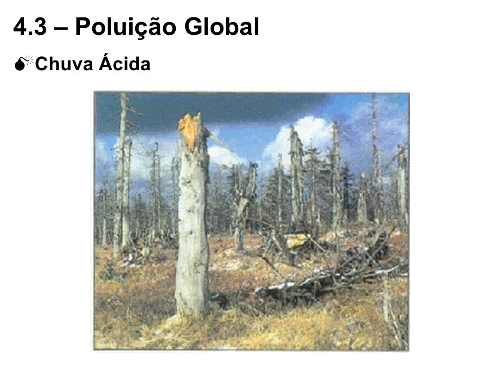4.3 – Poluição Global Chuva Ácida