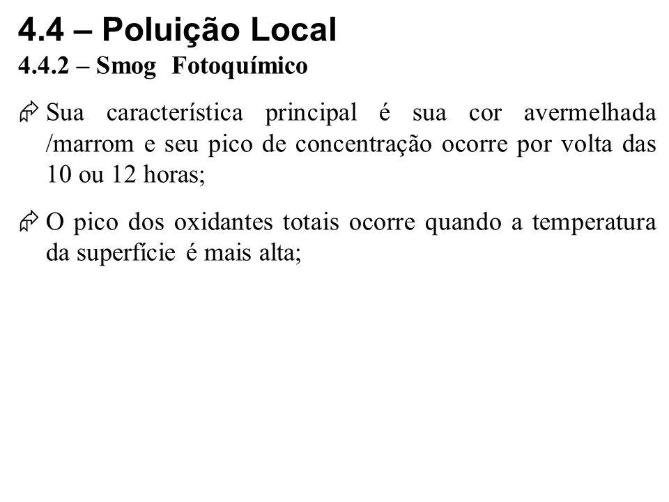 4.4 – Poluição Local 4.4.2 – Smog Fotoquímico