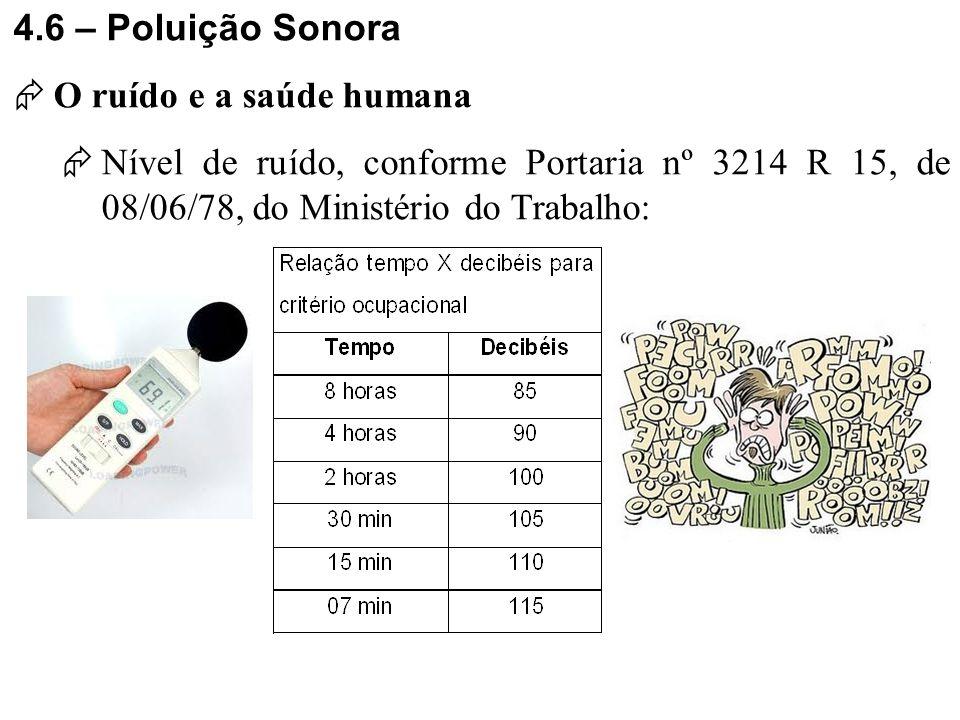 4.6 – Poluição Sonora O ruído e a saúde humana.