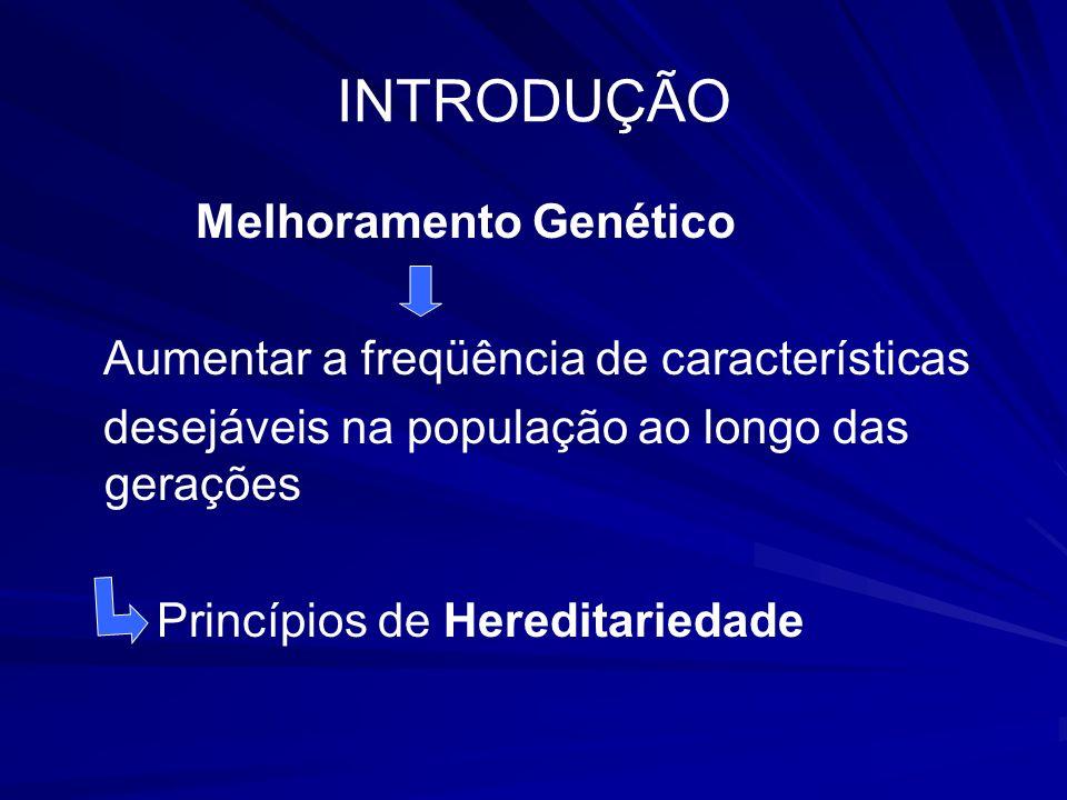 INTRODUÇÃO Melhoramento Genético