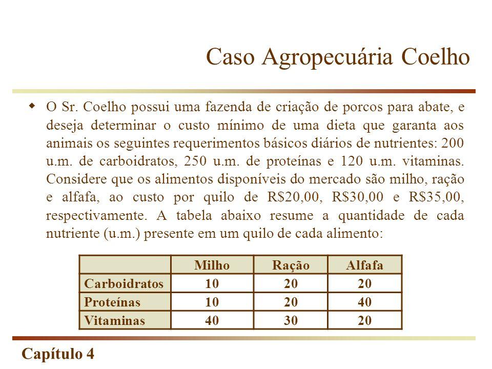 Caso Agropecuária Coelho