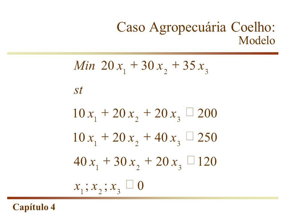 Caso Agropecuária Coelho: Modelo