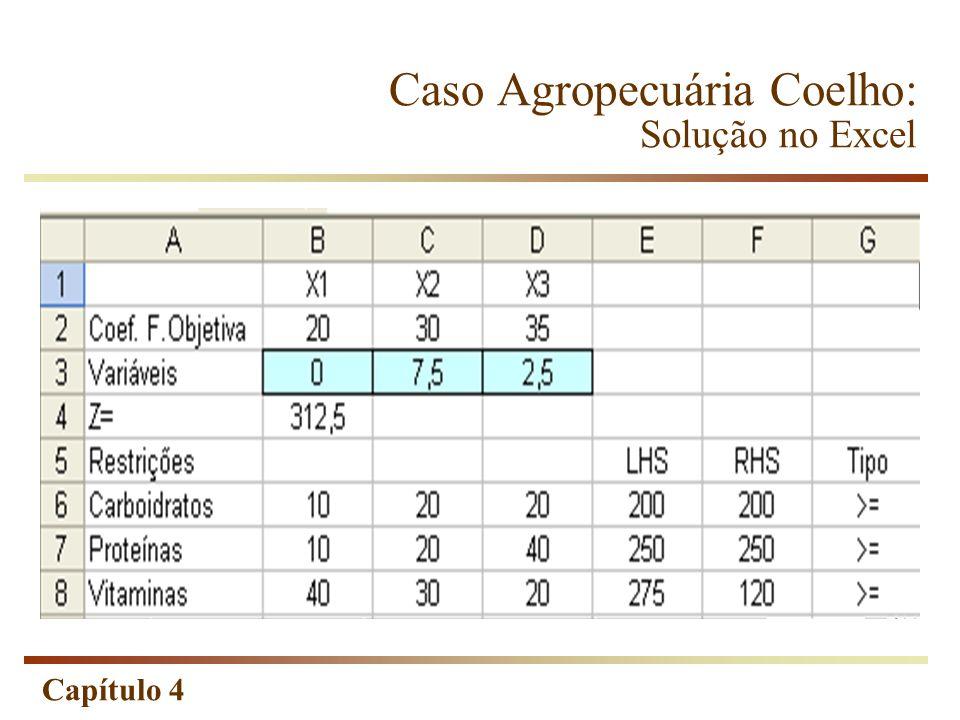 Caso Agropecuária Coelho: Solução no Excel