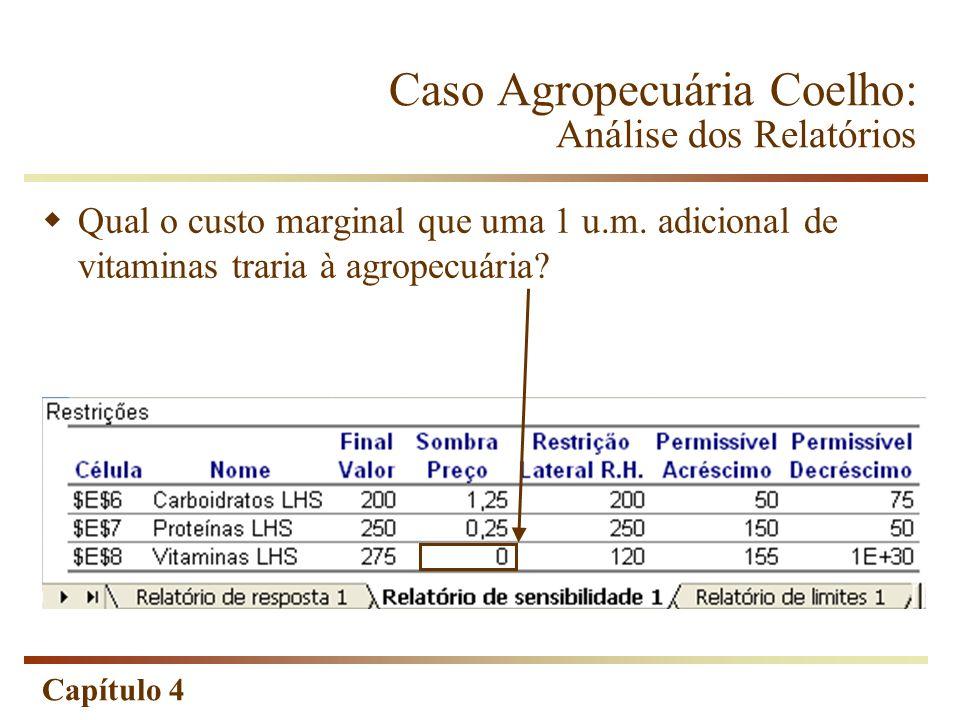 Caso Agropecuária Coelho: Análise dos Relatórios