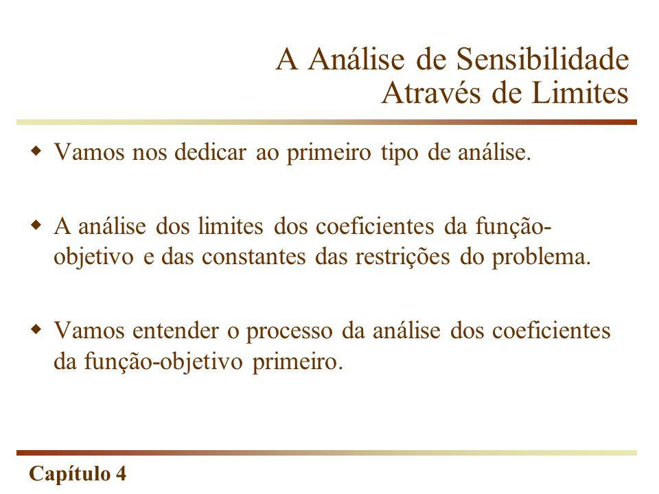A Análise de Sensibilidade Através de Limites
