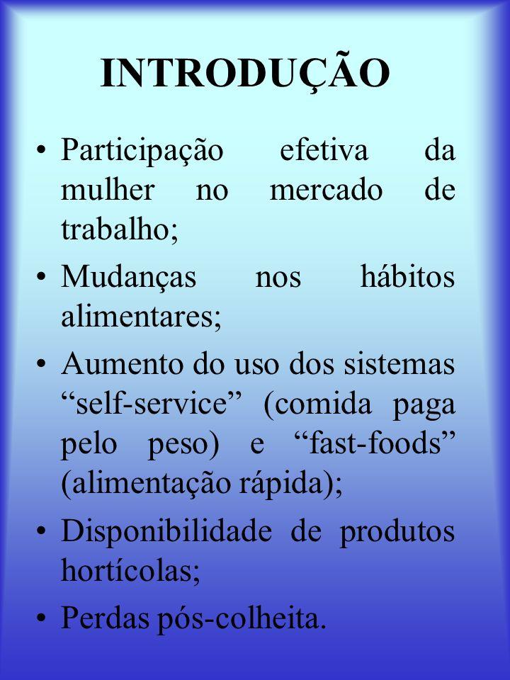 INTRODUÇÃO Participação efetiva da mulher no mercado de trabalho;