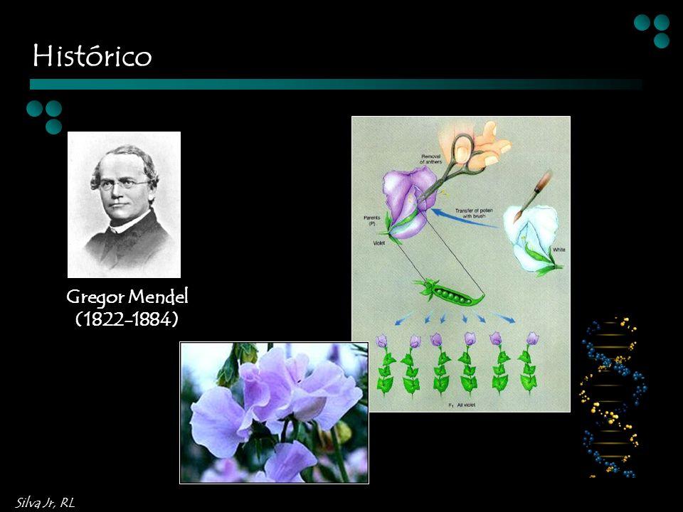Histórico Gregor Mendel (1822-1884)