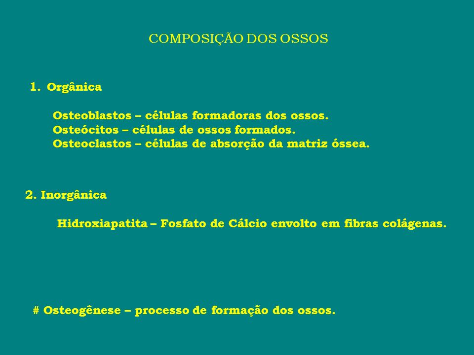 COMPOSIÇÃO DOS OSSOS Orgânica