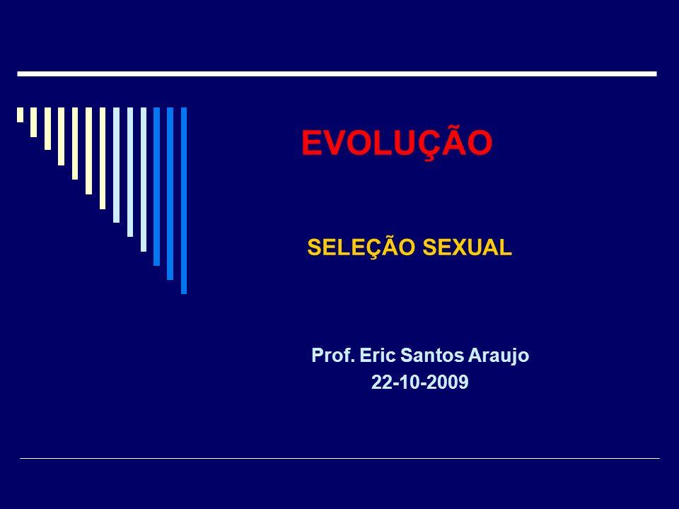 Prof. Eric Santos Araujo 22-10-2009