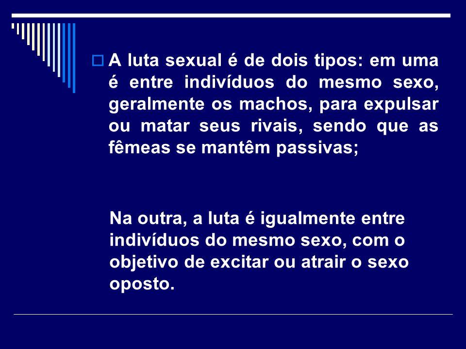 A luta sexual é de dois tipos: em uma é entre indivíduos do mesmo sexo, geralmente os machos, para expulsar ou matar seus rivais, sendo que as fêmeas se mantêm passivas;