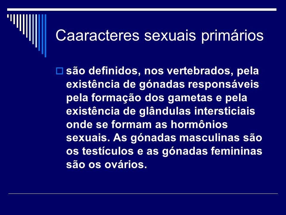 Caaracteres sexuais primários