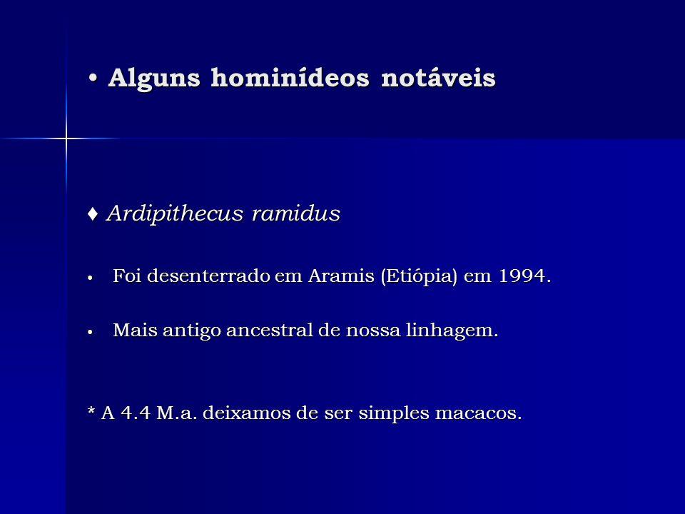 Alguns hominídeos notáveis