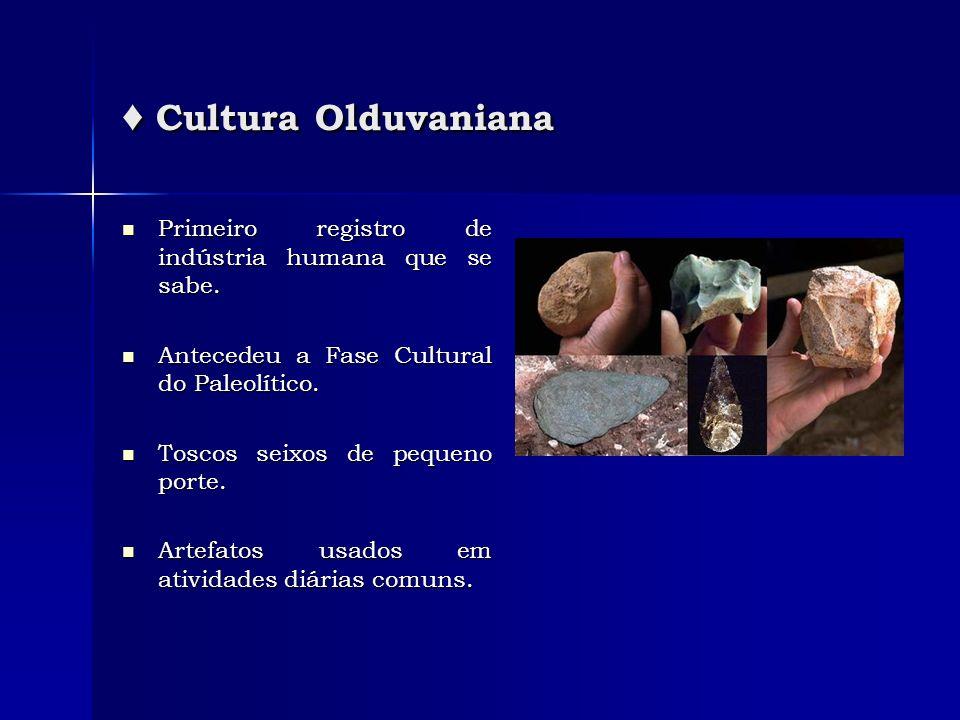 ♦ Cultura OlduvanianaPrimeiro registro de indústria humana que se sabe. Antecedeu a Fase Cultural do Paleolítico.