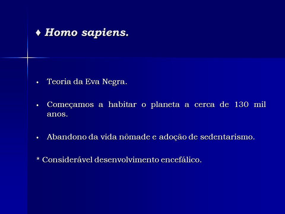 ♦ Homo sapiens. Teoria da Eva Negra.