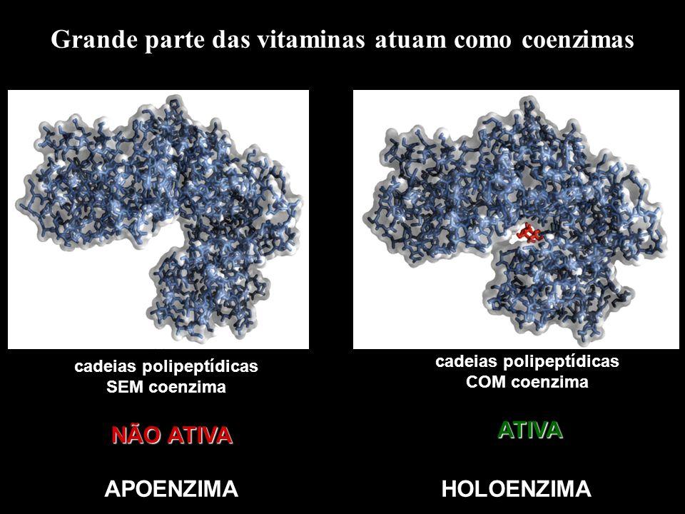 Grande parte das vitaminas atuam como coenzimas