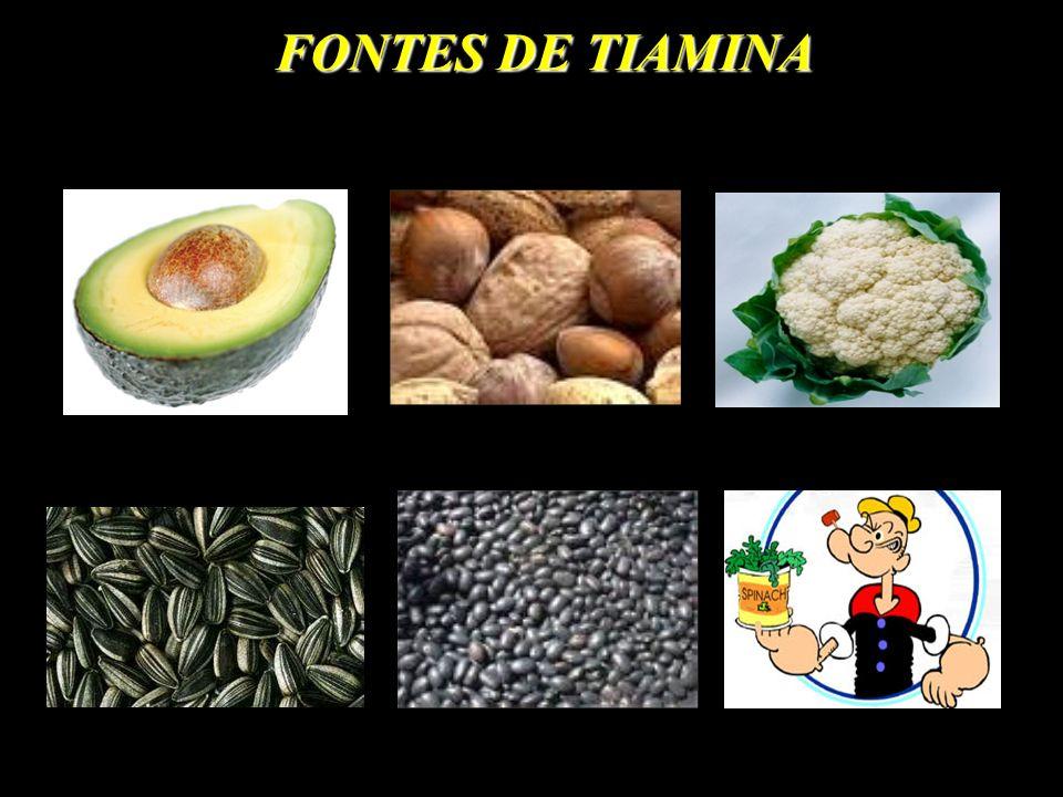 FONTES DE TIAMINA
