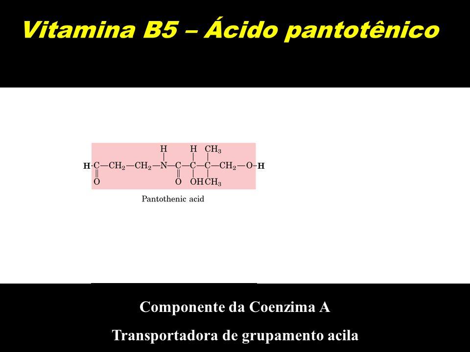 Vitamina B5 – Ácido pantotênico