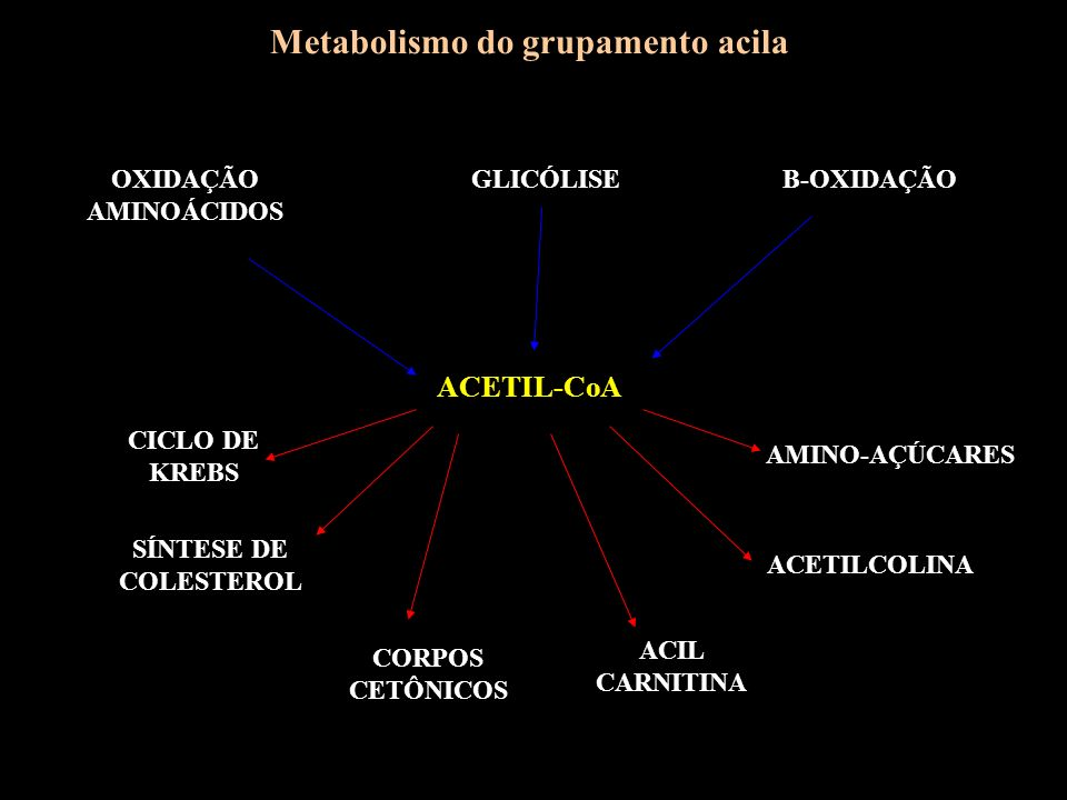 Metabolismo do grupamento acila
