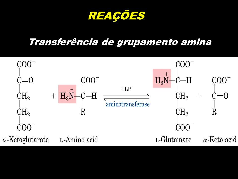 Transferência de grupamento amina
