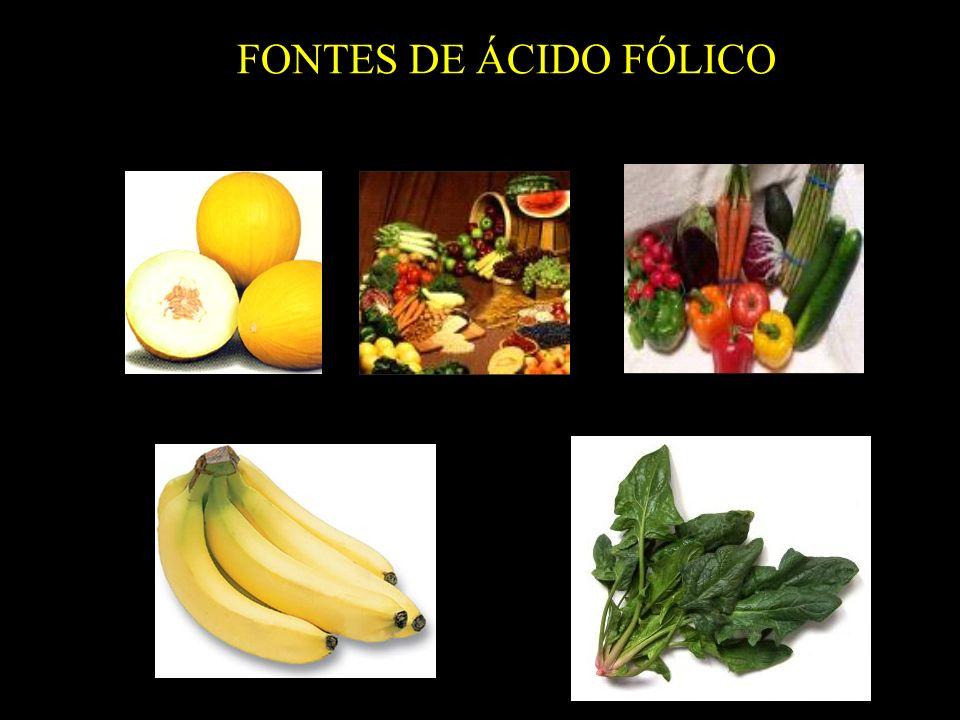 FONTES DE ÁCIDO FÓLICO