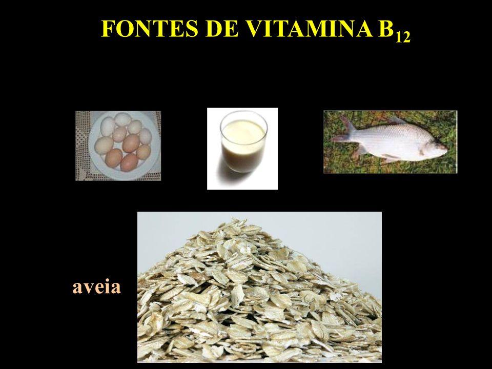 FONTES DE VITAMINA B12 aveia