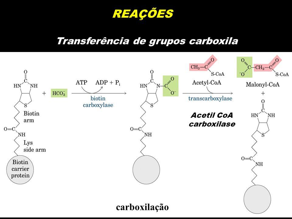 REAÇÕES Transferência de grupos carboxila carboxilação