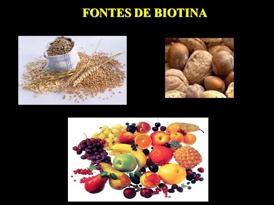 FONTES DE BIOTINA