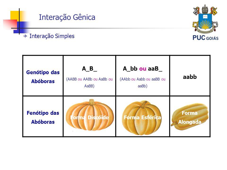 Interação Gênica  Interação Simples A_B_ A_bb ou aaB_ aabb