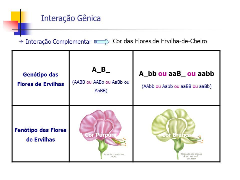 Genótipo das Flores de Ervilhas Fenótipo das Flores de Ervilhas