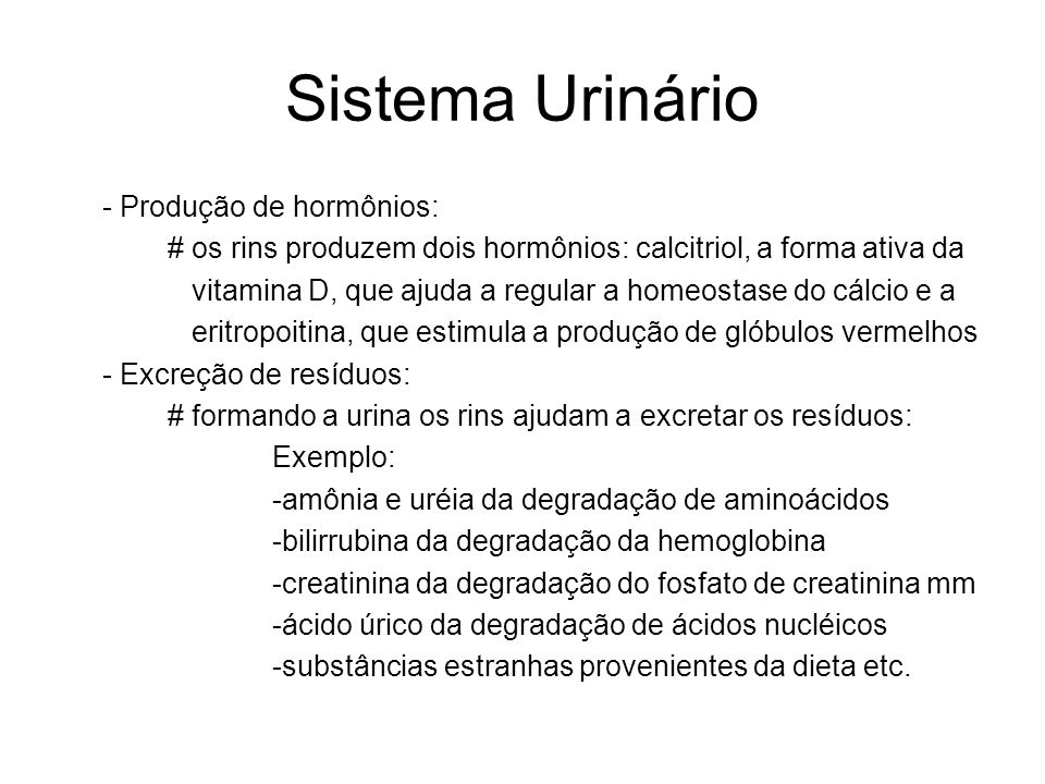Sistema Urinário - Produção de hormônios: