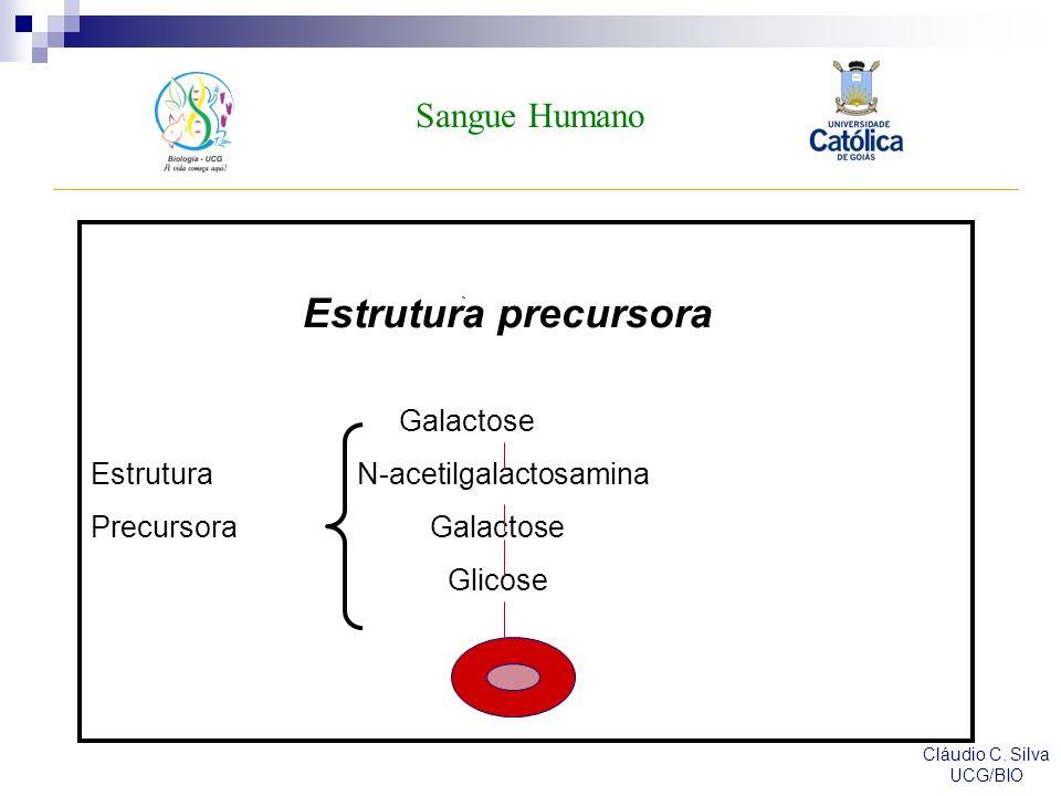 Estrutura precursora Sangue Humano Galactose