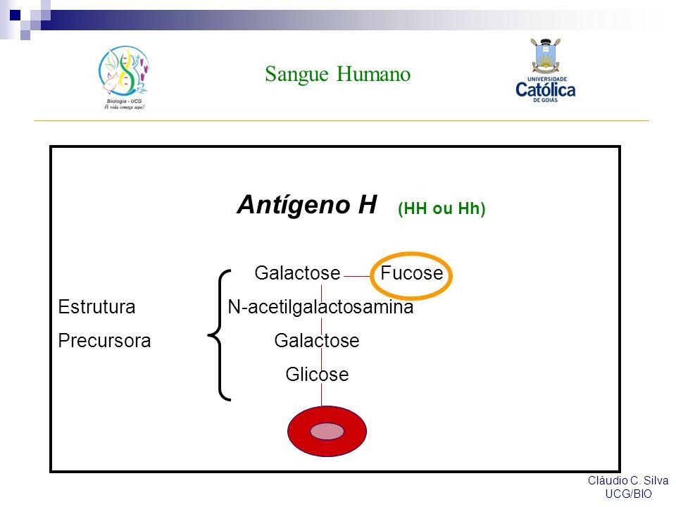 Antígeno H Sangue Humano Galactose Fucose