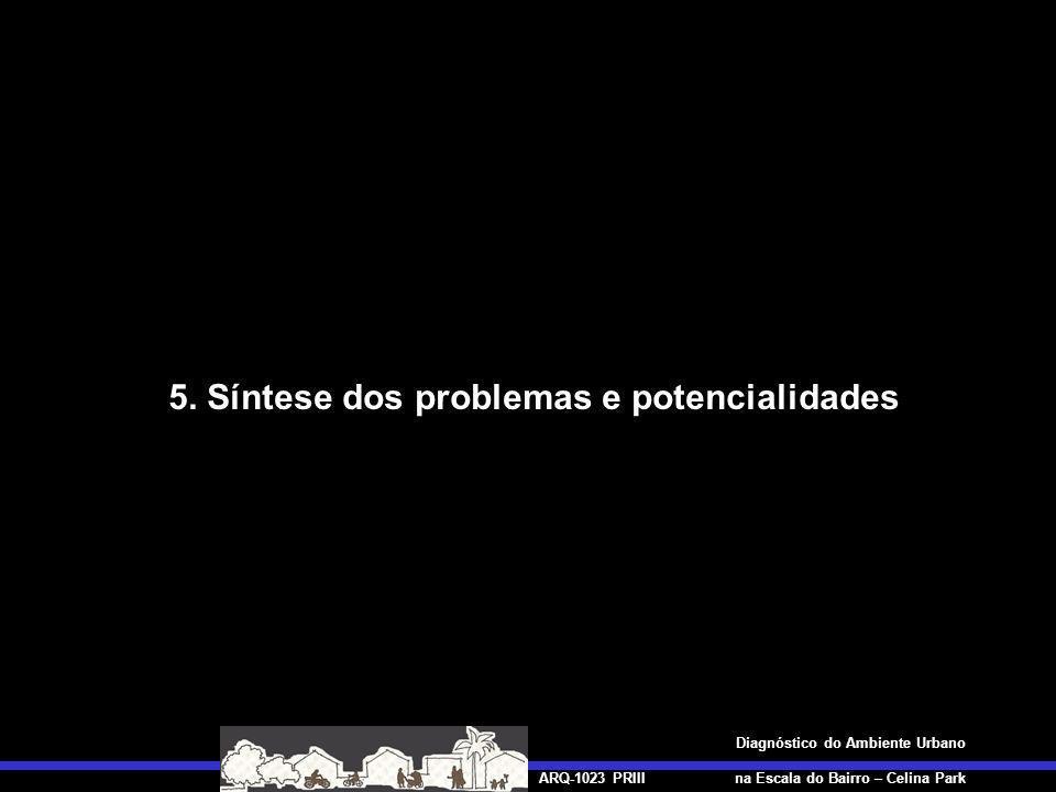 5. Síntese dos problemas e potencialidades