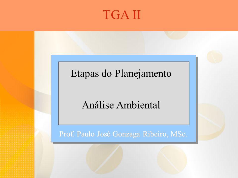 TGA II Etapas do Planejamento Análise Ambiental