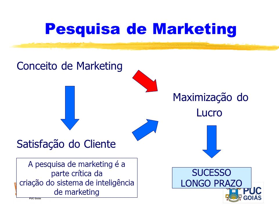 Pesquisa de Marketing Conceito de Marketing Maximização do Lucro