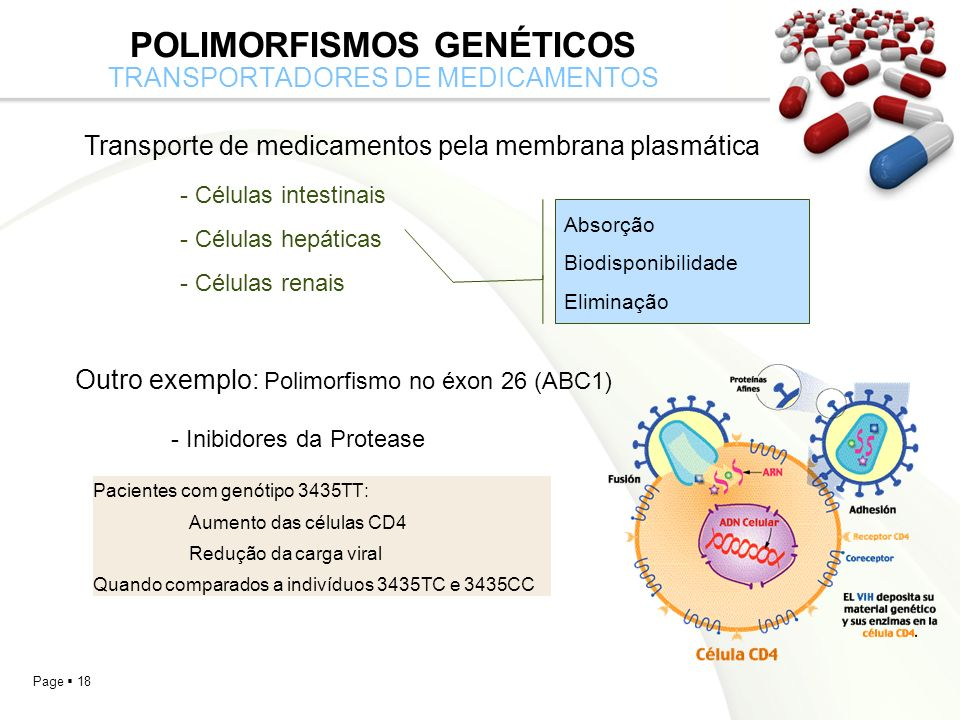 Polimorfismos Genéticos transportadores de medicamentos