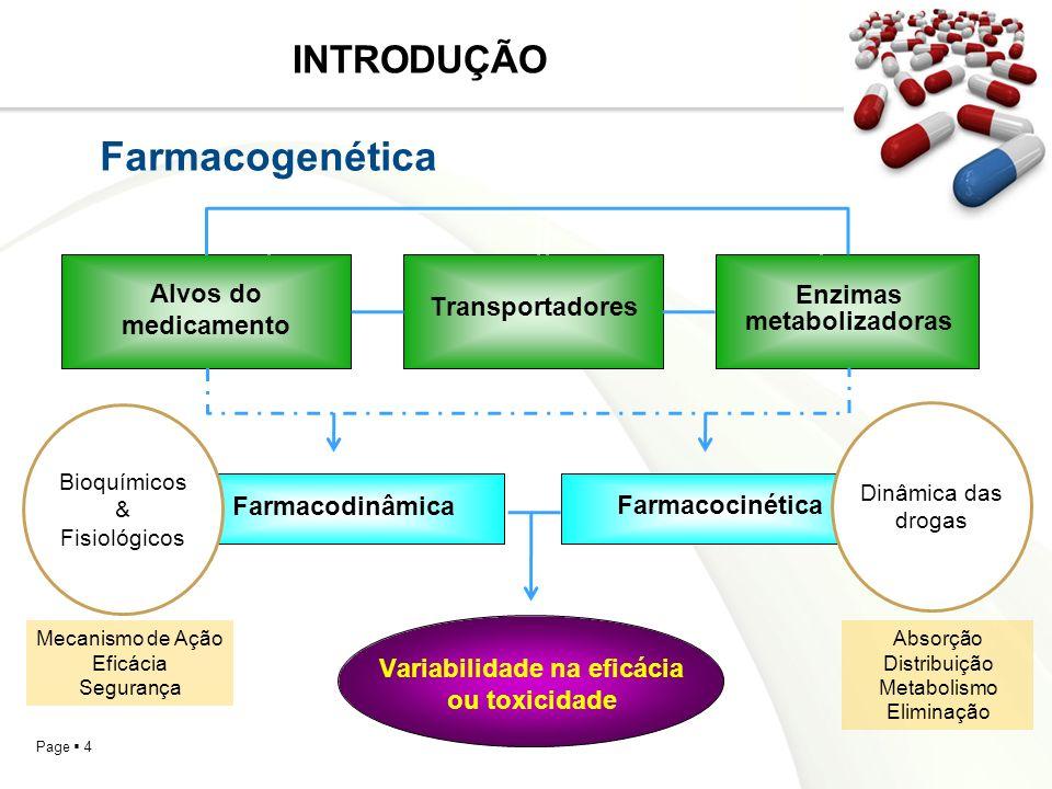 Variabilidade na eficácia ou toxicidade Enzimas metabolizadoras