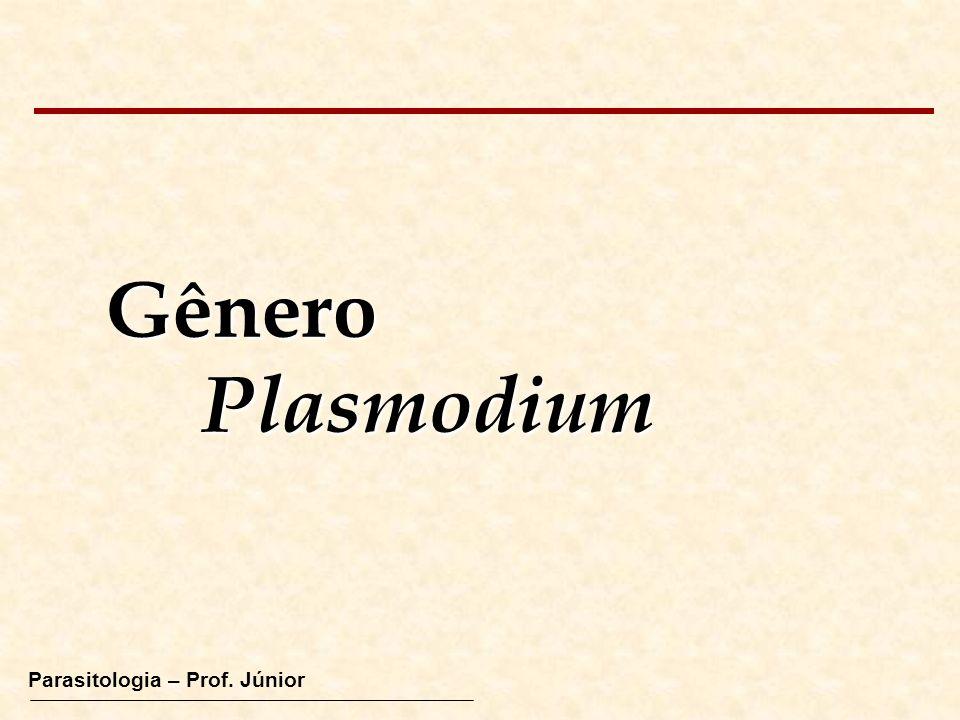 Gênero Plasmodium