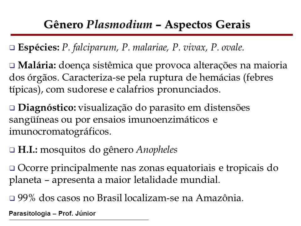 Gênero Plasmodium – Aspectos Gerais