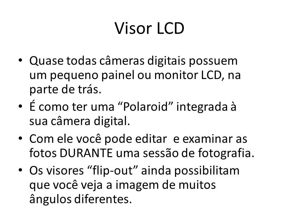 Visor LCD Quase todas câmeras digitais possuem um pequeno painel ou monitor LCD, na parte de trás.