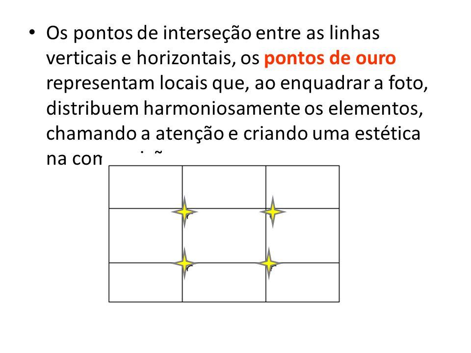 Os pontos de interseção entre as linhas verticais e horizontais, os pontos de ouro representam locais que, ao enquadrar a foto, distribuem harmoniosamente os elementos, chamando a atenção e criando uma estética na composição.