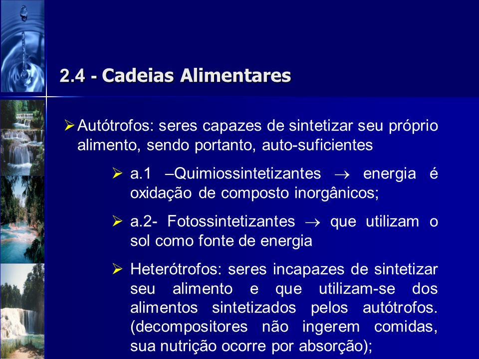 2.4 - Cadeias Alimentares Autótrofos: seres capazes de sintetizar seu próprio alimento, sendo portanto, auto-suficientes.
